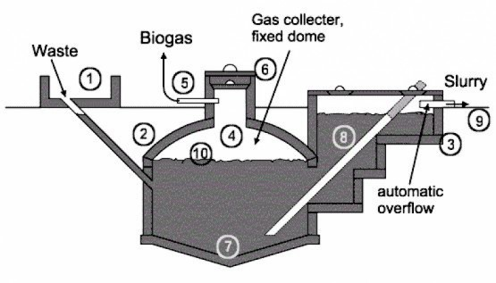 Domestic Biogas